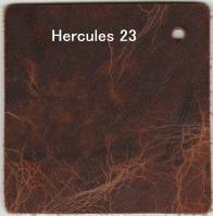 Hercule 23